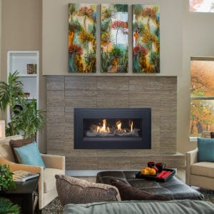 Pacific Energy Esprit Gas Fireplace with Picture Frame Trim