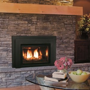 Enviro E20 Gas Fireplace Insert | Safe Home Fireplace in London & Strathroy Ontario