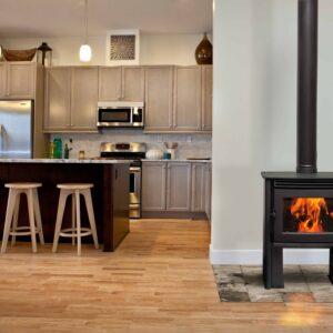 Pacific Energy Neo 1.2 wood stove
