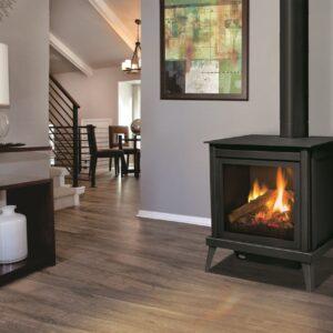 Enviro S40 freestanding gas stove