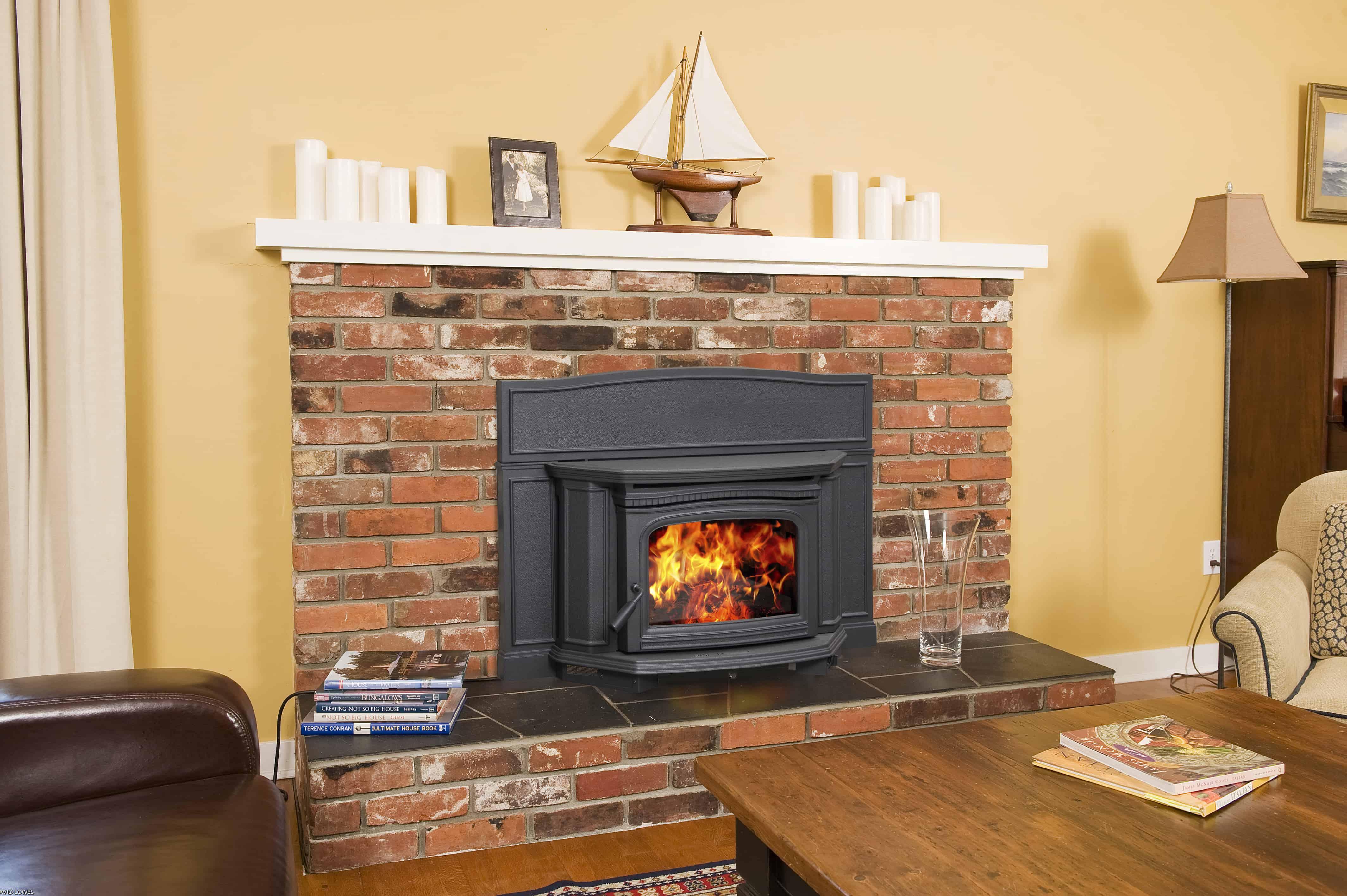 Pacific Energy Alderlea T5 Le Wood Fireplace Insert Safe