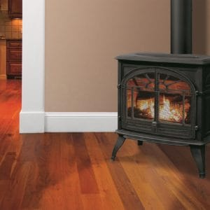 Enviro westport cast iron freestanding gas stove