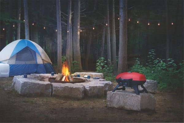 Napoleon travelq 285 portable barbecue | safe home fireplace in london ontario