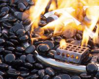 Thecarboncollection nov2020 5 image on safe home fireplace website